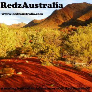 RedzAustralia Logo