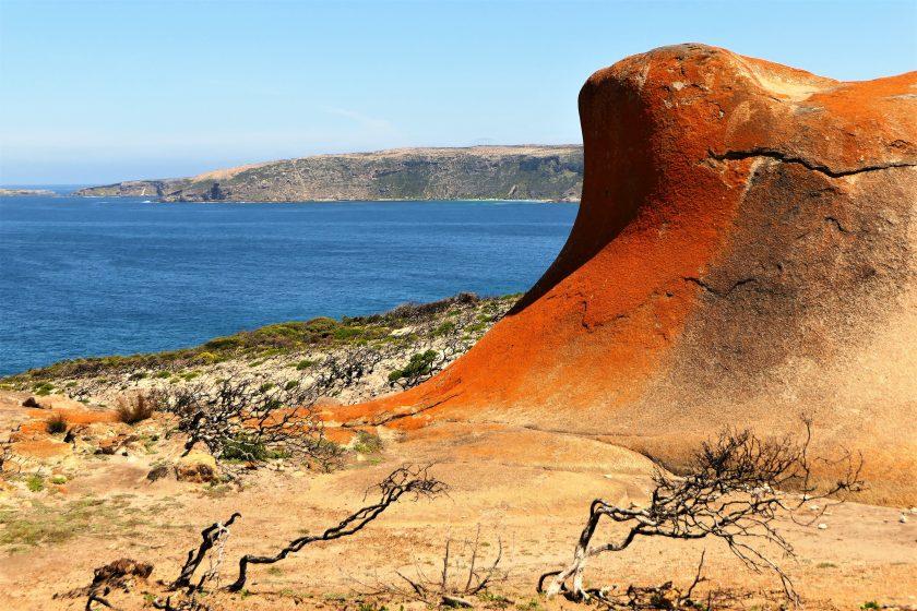 Lichen-covered rocks, Remarkable Rocks, Kangaroo Island