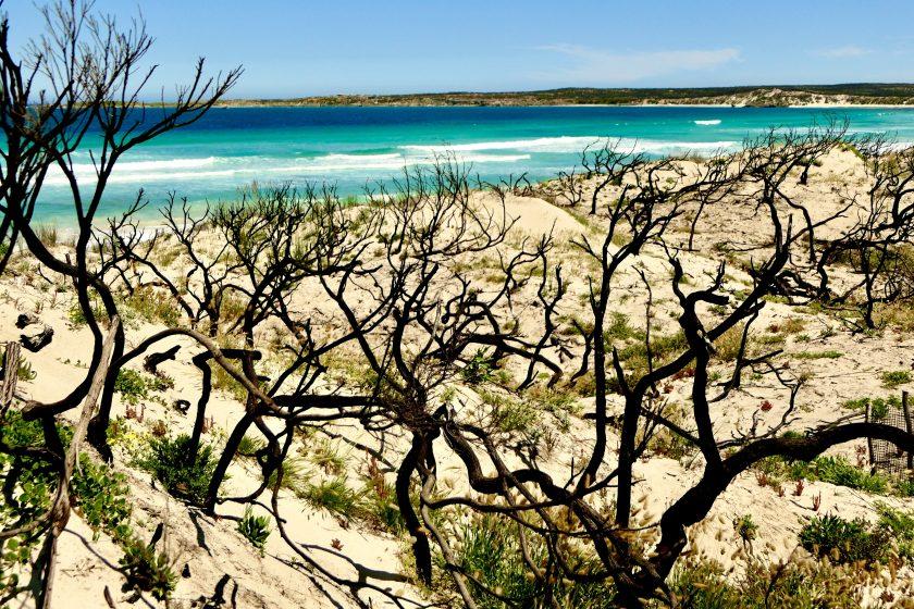 Vivonne Bay with Bushfire Damage